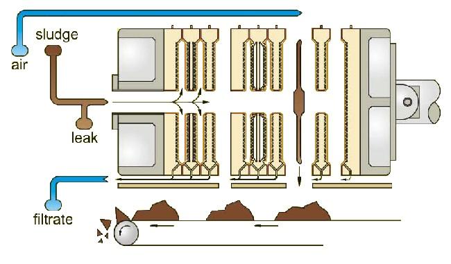 Automatic Membrane Type